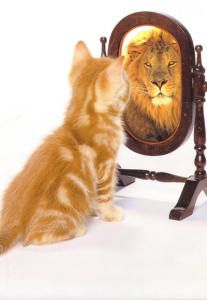 kitten lion mirror