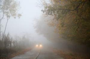 car on road in fog